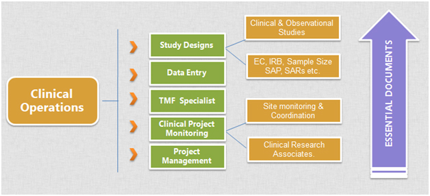 clinical-operations-info-graphic